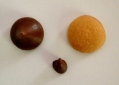 Ingredients for Acorns